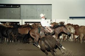 Primary view of object titled 'Cutting Horse Competition: Image 1997_D-11_07'.