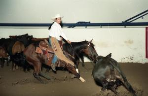 Primary view of object titled 'Cutting Horse Competition: Image 1997_D-11_08'.