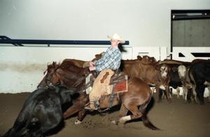Primary view of object titled 'Cutting Horse Competition: Image 1997_D-11_09'.