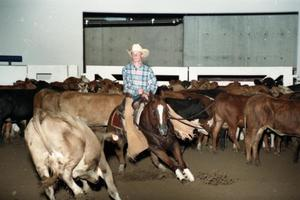 Primary view of object titled 'Cutting Horse Competition: Image 1997_D-11_10'.