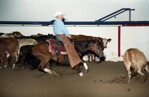 Primary view of object titled 'Cutting Horse Competition: Image 1997_D-11_15'.