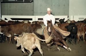 Primary view of object titled 'Cutting Horse Competition: Image 1997_D-11_28'.