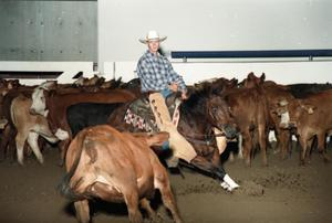 Primary view of object titled 'Cutting Horse Competition: Image 1997_D-11_30'.