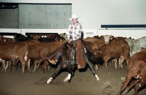 Primary view of object titled 'Cutting Horse Competition: Image 1997_D-11_35'.
