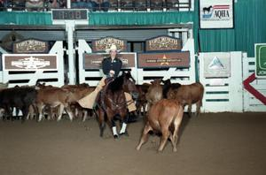 Primary view of object titled 'Cutting Horse Competition: Image 1997_D-120_07'.
