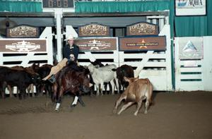 Primary view of object titled 'Cutting Horse Competition: Image 1997_D-120_10'.