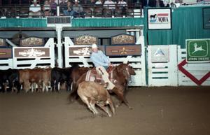 Primary view of object titled 'Cutting Horse Competition: Image 1997_D-120_14'.