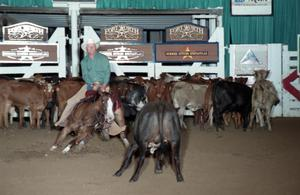 Primary view of object titled 'Cutting Horse Competition: Image 1997_D-122_02'.