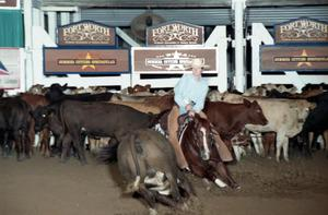 Primary view of object titled 'Cutting Horse Competition: Image 1997_D-122_24'.