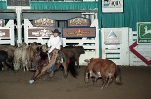 Primary view of object titled 'Cutting Horse Competition: Image 1997_D-125_06'.