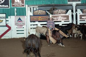 Primary view of object titled 'Cutting Horse Competition: Image 1997_D-125_08'.
