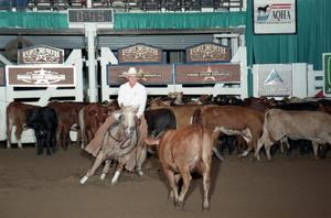 Primary view of object titled 'Cutting Horse Competition: Image 1997_D-127_01'.