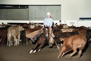Primary view of object titled 'Cutting Horse Competition: Image 1997_D-12_05'.