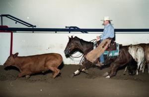 Primary view of object titled 'Cutting Horse Competition: Image 1997_D-12_06'.