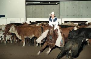 Primary view of object titled 'Cutting Horse Competition: Image 1997_D-12_08'.