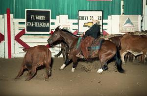 Primary view of object titled 'Cutting Horse Competition: Image 1997_D-12_15'.