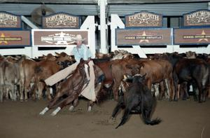 Primary view of object titled 'Cutting Horse Competition: Image 1997_D-131_25'.
