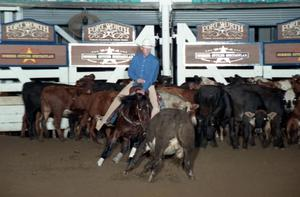 Primary view of object titled 'Cutting Horse Competition: Image 1997_D-132_10'.