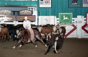 Primary view of object titled 'Cutting Horse Competition: Image 1997_D-133_29'.