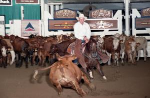 Primary view of object titled 'Cutting Horse Competition: Image 1997_D-138_19'.