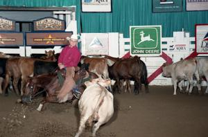 Primary view of object titled 'Cutting Horse Competition: Image 1997_D-140_34'.