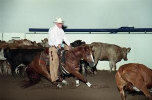 Primary view of object titled 'Cutting Horse Competition: Image 1997_D-14_03'.