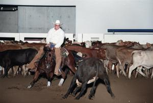 Primary view of object titled 'Cutting Horse Competition: Image 1997_D-14_16'.
