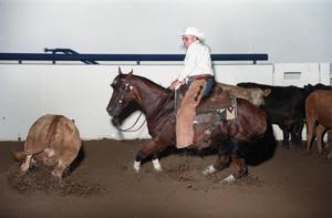 Primary view of object titled 'Cutting Horse Competition: Image 1997_D-14_19'.