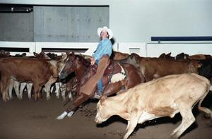 Primary view of object titled 'Cutting Horse Competition: Image 1997_D-14_22'.
