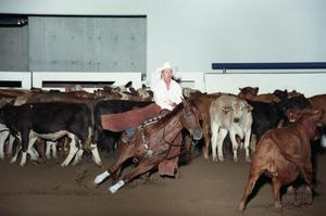 Primary view of object titled 'Cutting Horse Competition: Image 1997_D-14_26'.