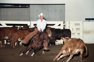 Primary view of object titled 'Cutting Horse Competition: Image 1997_D-14_27'.