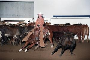 Primary view of object titled 'Cutting Horse Competition: Image 1997_D-14_35'.