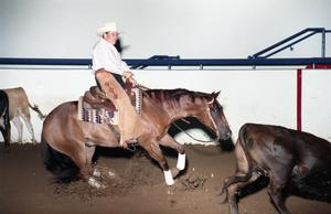 Primary view of object titled 'Cutting Horse Competition: Image 1997_D-15_03'.