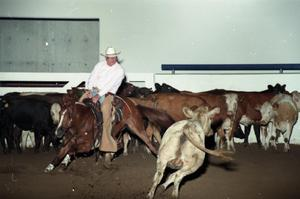 Primary view of object titled 'Cutting Horse Competition: Image 1997_D-15_11'.