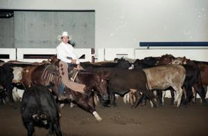 Primary view of object titled 'Cutting Horse Competition: Image 1997_D-15_17'.