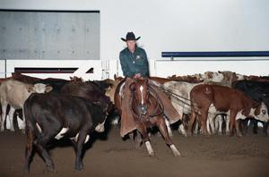 Primary view of object titled 'Cutting Horse Competition: Image 1997_D-16_34'.