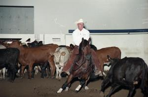 Primary view of object titled 'Cutting Horse Competition: Image 1997_D-17_01'.