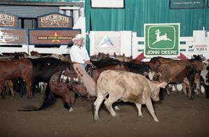 Primary view of object titled 'Cutting Horse Competition: Image 1997_D-17_18'.