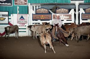 Primary view of object titled 'Cutting Horse Competition: Image 1997_D-17_29'.