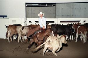 Primary view of object titled 'Cutting Horse Competition: Image 1997_D-1_32'.