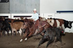 Primary view of object titled 'Cutting Horse Competition: Image 1997_D-1_34'.