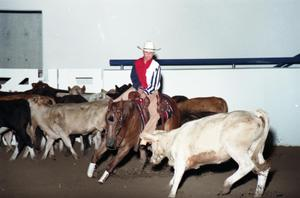 Primary view of object titled 'Cutting Horse Competition: Image 1997_D-2_09'.