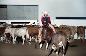 Primary view of object titled 'Cutting Horse Competition: Image 1997_D-2_11'.