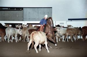 Primary view of object titled 'Cutting Horse Competition: Image 1997_D-2_12'.