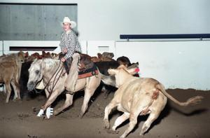 Primary view of object titled 'Cutting Horse Competition: Image 1997_D-2_15'.