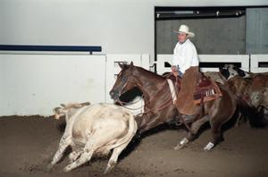 Primary view of object titled 'Cutting Horse Competition: Image 1997_D-2_18'.