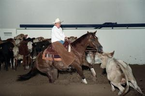 Primary view of object titled 'Cutting Horse Competition: Image 1997_D-2_19'.