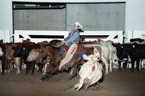 Primary view of object titled 'Cutting Horse Competition: Image 1997_D-2_22'.
