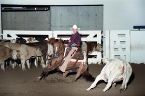 Primary view of object titled 'Cutting Horse Competition: Image 1997_D-2_29'.