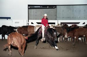 Primary view of object titled 'Cutting Horse Competition: Image 1997_D-3_14'.